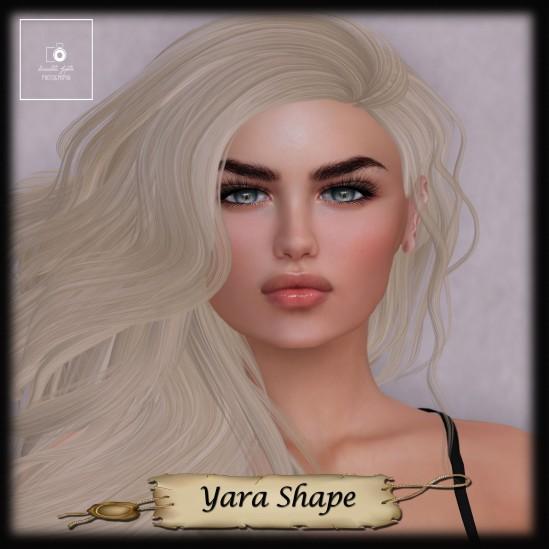 Arab Gate - Yara Shape Add